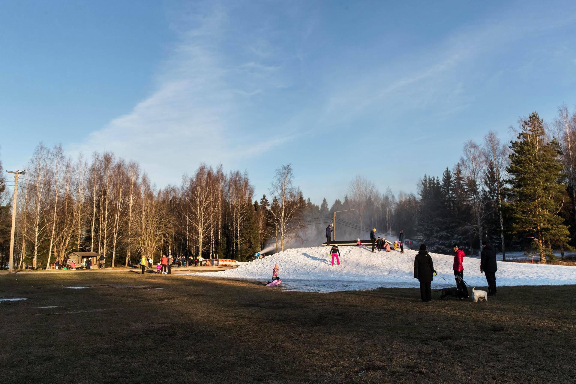 Espoon Oittaan tykkilumilatu oli viikonloppuna auki, ja hiihtolatujen kupeessa päästiin myös laskemaan mäkeä pienen tykkilumikasan päältä. Oittaa oli viikonloppuna yksi harvoista  auki olevista pääkaupunkiseudun ulkoladuista.