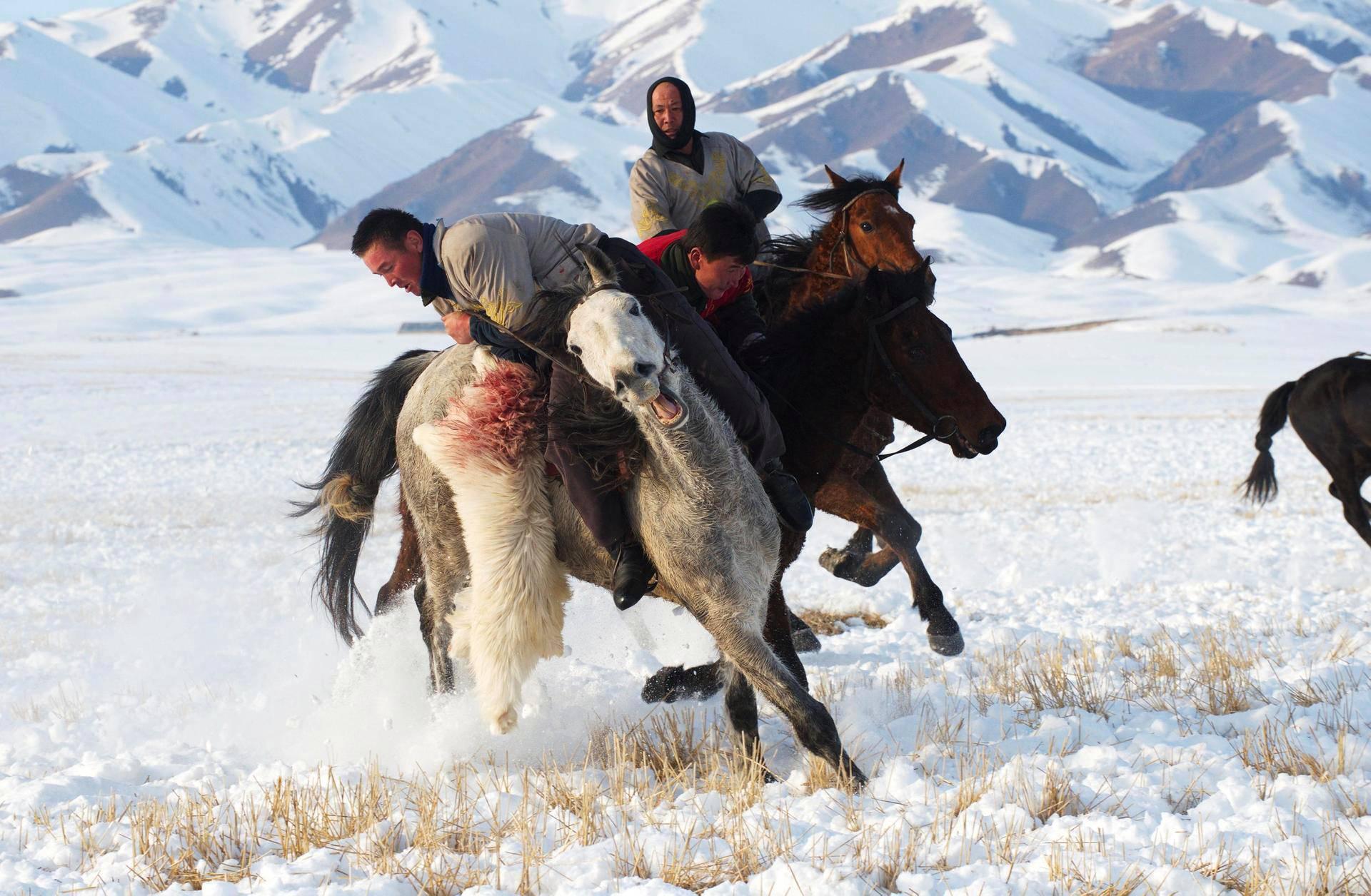 Paimenet kilpailivat vuohesta uiguurien talvijuhlissa Yilissä Kiinassa.