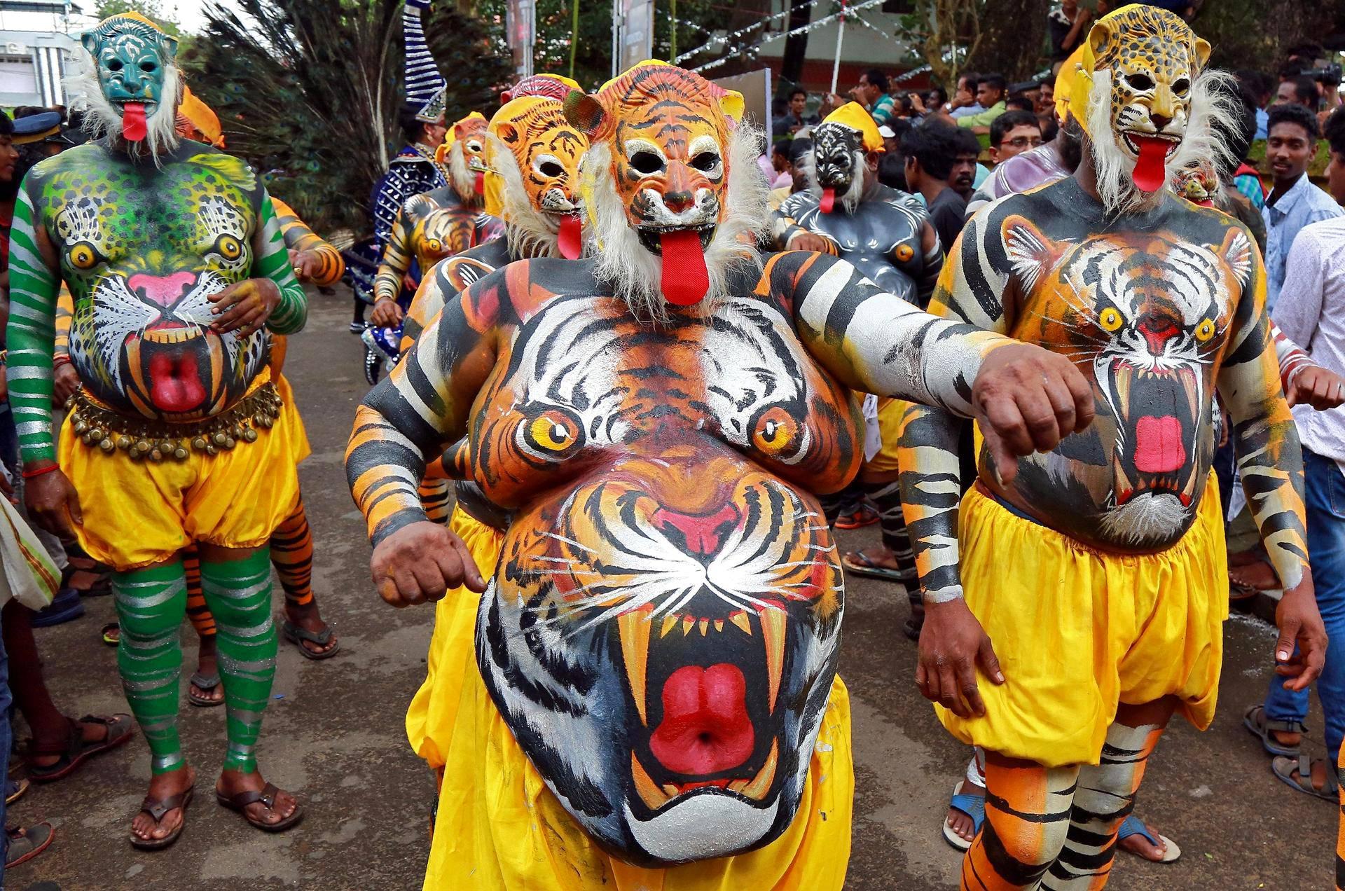 Tiikereiksi maalatut esiintyjät tanssivat sadonkorjuukauden aloitusjuhlissa Kochissa, Intiassa.