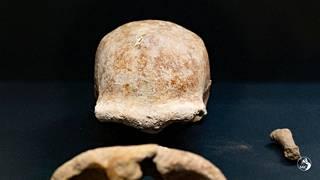 Suurin osa löydetyistä jäänteistä kuului aikuisille neandertalinihmisille.