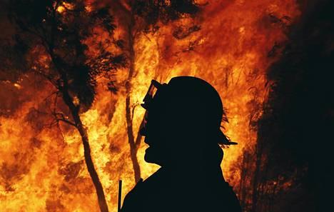 Palomies maastopalon äärellä Sydneyn lähellä syyskuussa.