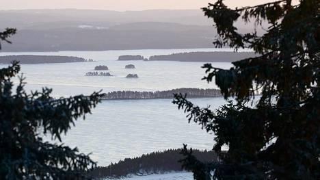 Metsähallitus ylläpitää kansallispuistoja ja valtion retkeilyalueita. Ne ovat suosittuja ja aluetaloudellisesti merkittäviä kohteita. Kuvassa pakkasaamu Kolin kansallispuistosta nähtynä tammikuussa 2020.