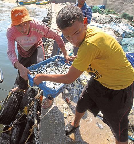 Kalastajat siirsivät saalistaan perjantaiaamuna Gazassa ennen tulitauon rikkoutumista.