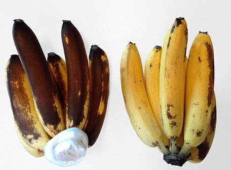 Banaanin kuoreen ilmestyvät tummat kohdat syntyvät tyrosinaasi-entsyymistä.