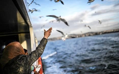 Syyriasta paennut perhe syötti lokkeja ylittäessään Bosborinsalmen matkalla Istanbulin Euroopan puoleiseen osaan.