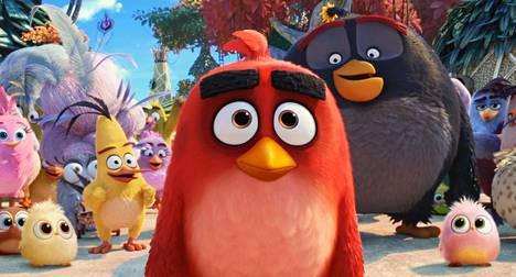 Angry Birds -hahmot ovat siirtyneet mobiilipelistä elokuviksi ja tv-sarjoiksi