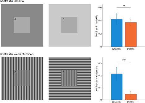 Neliöiden A ja B kirkkaus on täsmälleen sama, mutta ne havaitaan taustan vuoksi erilaisina. Potilaat ja kontrolliryhmä näkivät illuusion yhtä voimakkaana. Myös neliöiden C ja D kontrasti on sama. Potilaat näkivät illuusion heikompana kuin kontrolliryhmä.