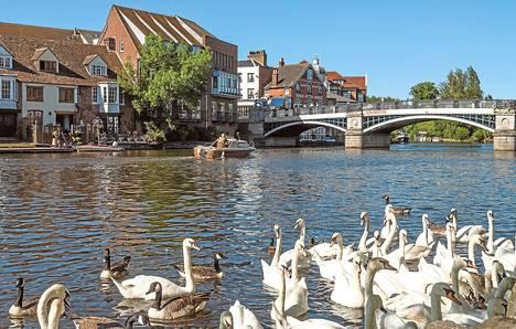 Eton tunnetaan parhaiten yksityisestä poikakoulustaan. Pikkukaupungista pääsee kävelysiltaa pitkin Thamesin yli Windsoriin.