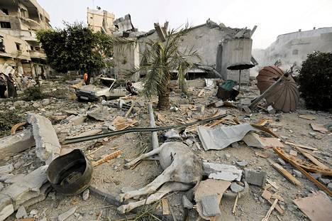 Kuollut aasi makasi tuhoutuneiden rakennusten keskellä Jabalian kaupungissa Gazassa lauantaina.