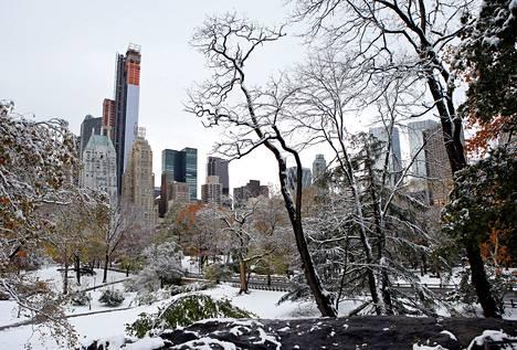 New Yorkin keskuspuisto peittyi lumeen marraskuun toisella viikolla.