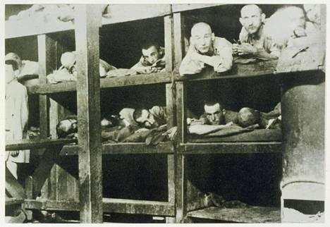 Vankeja Auschwitzin keskitysleirillä Puolassa vuonna 1944.