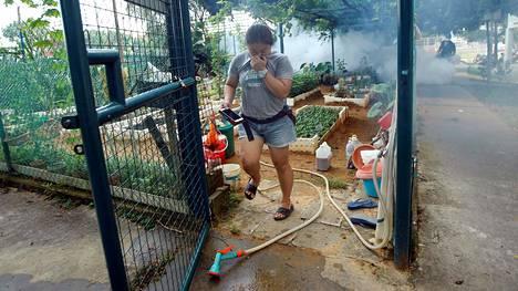 Zikavirusta levittäviä hyttysiä myrkytettiin savulla Singaporessa syyskuun alussa.