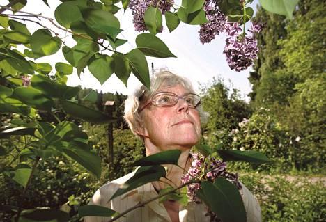 Syreenipuutarha on kukkiessaan upea. Koko aurinkoinen rinne hehkuu sinisen lilaa, vaaleanpunaista ja valkoista. Syreenien lomassa kulkee polkuja, jotka houkuttelevat lajikkeelta lajikkeelle.