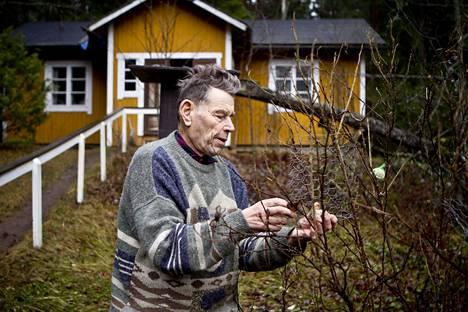 Pentti Linkola kotipihassaan Valkeakoskella vuonna 2012.