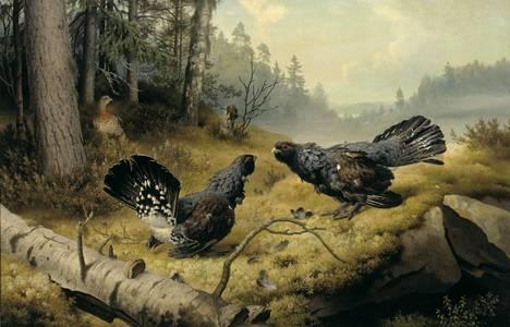 Veljeksistä kuuluisin Ferdinand von Wright (1822–1906) on tunnettu erityisesti lintumaalauksistaan, kuten Taistelevat metsot (1886).