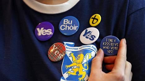 Skotlannin kansallispuolueen kannattajan rintanappikokoelma marraskuussa 2014. Yes (kyllä) tarkoittaa myönteistä suhtautumista Skotlannin itsenäistymiseen Britanniasta.