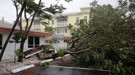 Myrskytuuli kaatoi puita Fort Lauderdalessa.