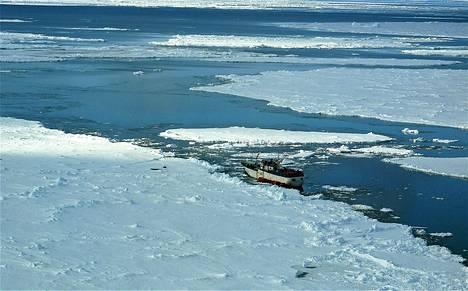 48-metrinen Sparta-laiva juuttui jäähän 15. joulukuuta, kun jää repi aukon sen runkoon ja alus alkoi vuotaa. Kuva on otettu 17. joulukuuta.