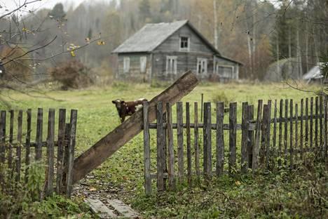 Suomalaiset voivat ostaa maata muun muassa Pitkärannan piiristä luovutetussa Karjalassa.