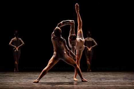Edoardo Pavoni ja Shae Berney Javier Torresin Flock-koreografiassa.