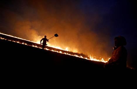 Brasilian ympäristöviraston palokunta yritti hallita metsäpaloja syyskuussa 2019. Bolsonaron hallinto on leikannut viraston rahoitusta.