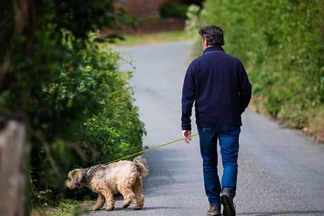 Koiralle on eduksi tarkkailla omistajansa vointia ja tunnetiloja.