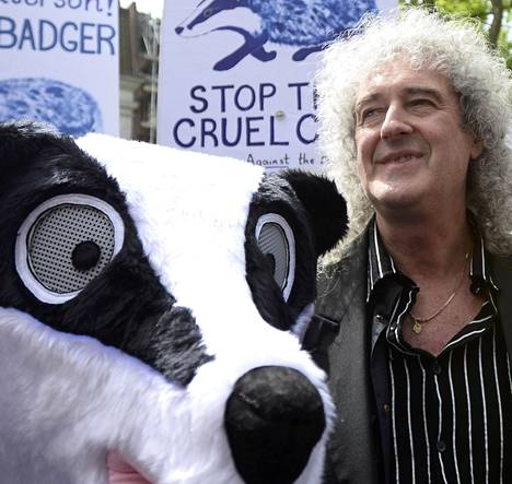 Mielenosoittaja ja Brian May