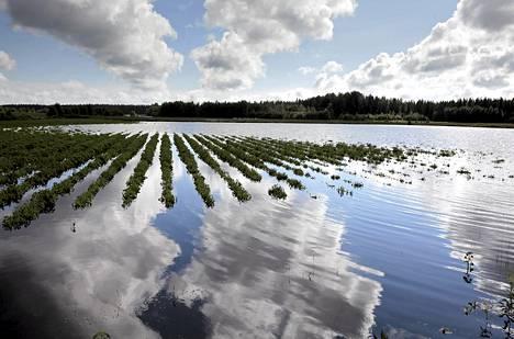 Härkmerenjoki tulvi viikonloppuna perunapelloille Kristiinankaupungissa.