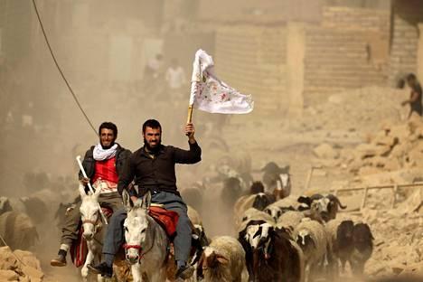 Bazwaian kylästä paenneet miehet heiluttivat valkoista lippua saapuessaan Irakin erikoisjoukkojen tarkastuspisteelle lähelle Mosulia tiistaina.