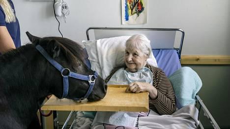 Marita Sten sai tavata Moona-ponin Kivelän palvelukeskuksessa.