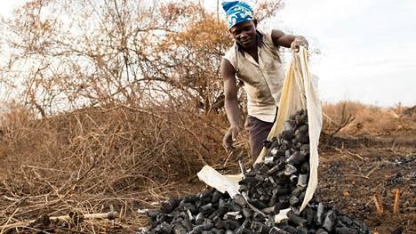 Robert Kato, 17, kasaa valmiita hiliä Masindi alueella Keski-Ugandassa.