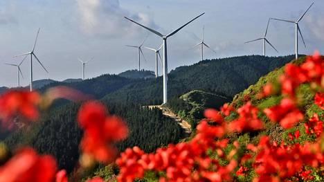 Tuulivoimaloita Jiangxin maakunnassa. Kuva on toukokuulta.