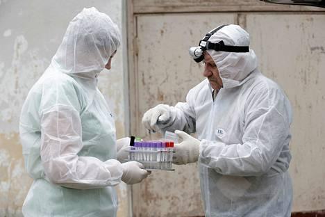 Tutkijat Vija Ritina (vas.) ja Igors Jermakovs ottivat näytteitä rezekneläisellä sikatilalla Latviassa heinäkuun alussa.