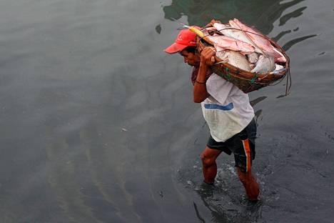 Mies purki kalalastia myydäkseen sen markkinoilla Sittwessä Myanmarissa kesäkuussa.