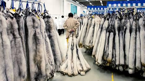 Vuonna 2014 Saga Furs järjesti turkishuutokaupan toimitiloissaan Vantaan Varistossa.