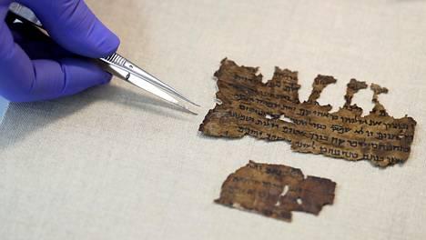 Kuolleenmeren kääröjen fragmentteja Israelin museoviraston laboratoriossa Jerusalemissa kesällä 2020.