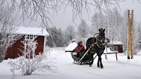 Monessa tutussa joululaulussa ajellaan reellä. Eelis Määttä ajelutti jouluvieraita Sotkamossa vuonna 2008.