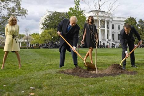 Donald Trump ja Emmanuel Macron istuttivat puun Valkoisen talon pihaan ystävyydensä merkiksi keväällä 2018. Mukana Brigitte Macron ja Melania Trump.
