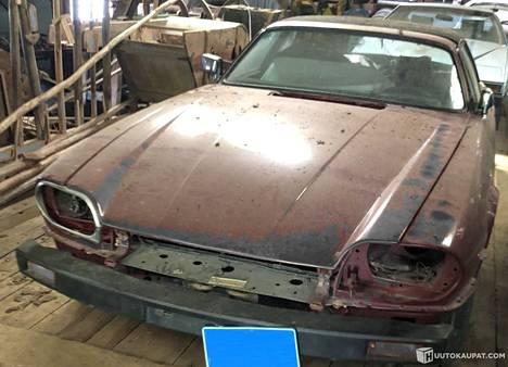 Jaguar on lojunut ladossa Etelä-Suomessa kymmenen vuotta.