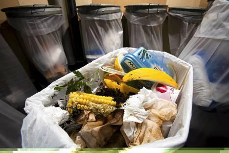 Naiset ovat miehiä tunnollisempia kierrättäjiä.