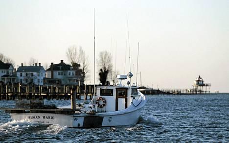 Kalastusalus lähdössä satamasta Chesapeakenlahdella Virginiassa. Yhdysvallat hyötyisi kalastuskiellosta.