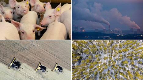 Teollisuuden toimialajärjestöt ja valtio luovat Tanskassa yhdessä välineitä, joiden avulla yritysten on helpompi arvioida päästöjään. Esimerkiksi maa- ja metsätalouden päästöjä on tällä hetkellä vaikea arvioida yrityskohtaisesti, joten päästöarviot perustuvat sektorin päästöihin kokonaisuutena.