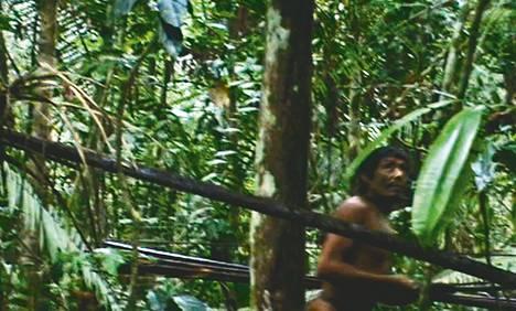 Ulkomaailmasta eristäytyneen Kawahiva-heimon jäsen päätyi kuviin Amazonin sademetsässä vuonna 2011. Kuva on ruutukaappaus intiaanijärjestö Funain kuvaamasta videosta.