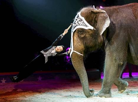 Chris Rui Knie ja elefantti harjoittelivat torstaina sirkusesitystä varten Rapperswilissä Sveitsissä.