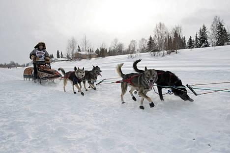 Jeff King joukkueineen etenee Chena-joen jäällä Alaskan Fairbanksissä järjestetyssä koiravaljakkokilpailussa maanantaina.
