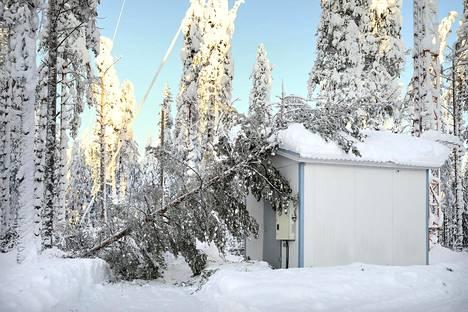 Tykkylumen katkaiseman puun latva putosi tukiasemamaston konehuoneen päälle Suomussalmen Hilponvaaralla tammikuun alkupuolella.