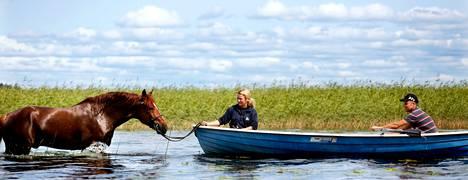 Kokenut ravimies Esa Holopainen ja hevostenhoitaja Anita Soininen uittivat Bokeria Vesijärvessä.