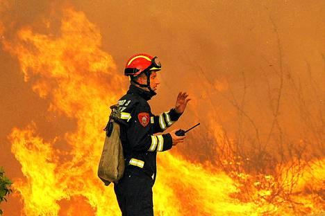 Rannikkoseudun palot ovat heinäkuusta lähtien tuhonneet jo useita tuhansia hehtaareja maastoa ja metsää. Kuva otettu 23. heinäkuuta.
