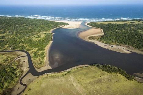 Valtaosa maailman elämästä on maan pinnalla. Vain prosentti biomassasta on merissä.
