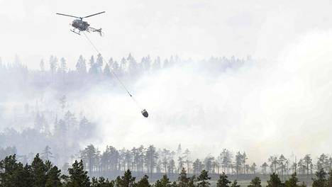 Helikopteri sammutti suurta metsäpaloa Keski-Ruotsin Ljusdalenissa keskiviikkona. Muista EU-maista saadut helikopterit ja sammutuslentokoneet ovat olleet Ruotsin palojen rajaamisessa ratkaisevassa roolissa.